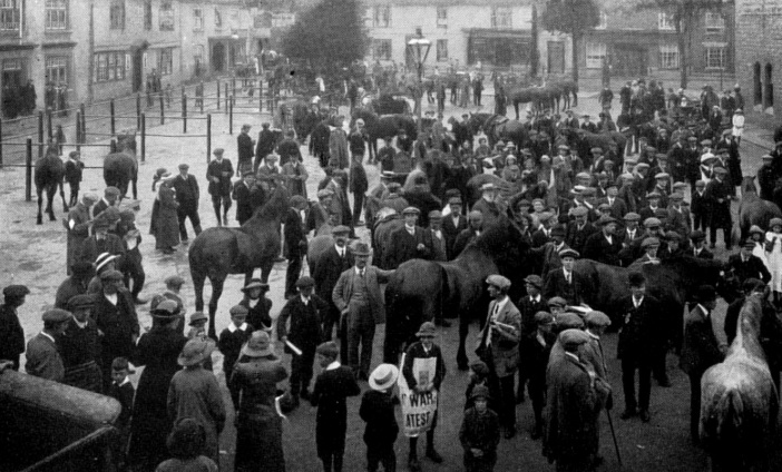 The image shows the first fifty horses requisitioned by the Military. They are stood in no orderely queues, and the scene appears to be quite chaotic as they wait.